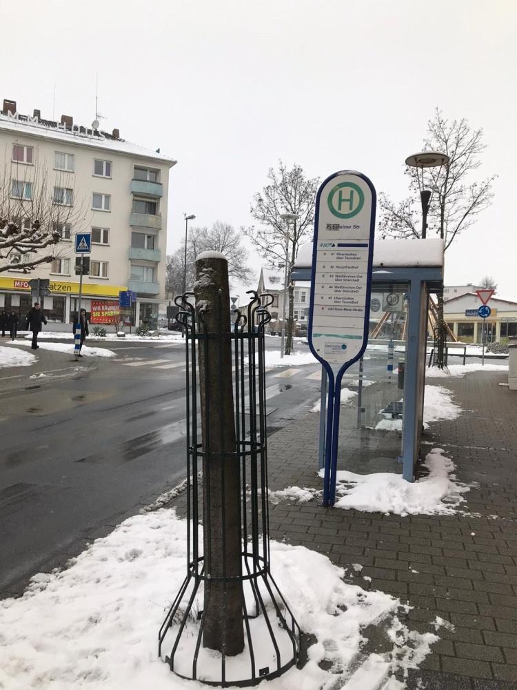 Baum-Holzweg